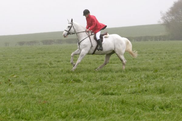 Red 100% Waterproof Horse Riding Jacket
